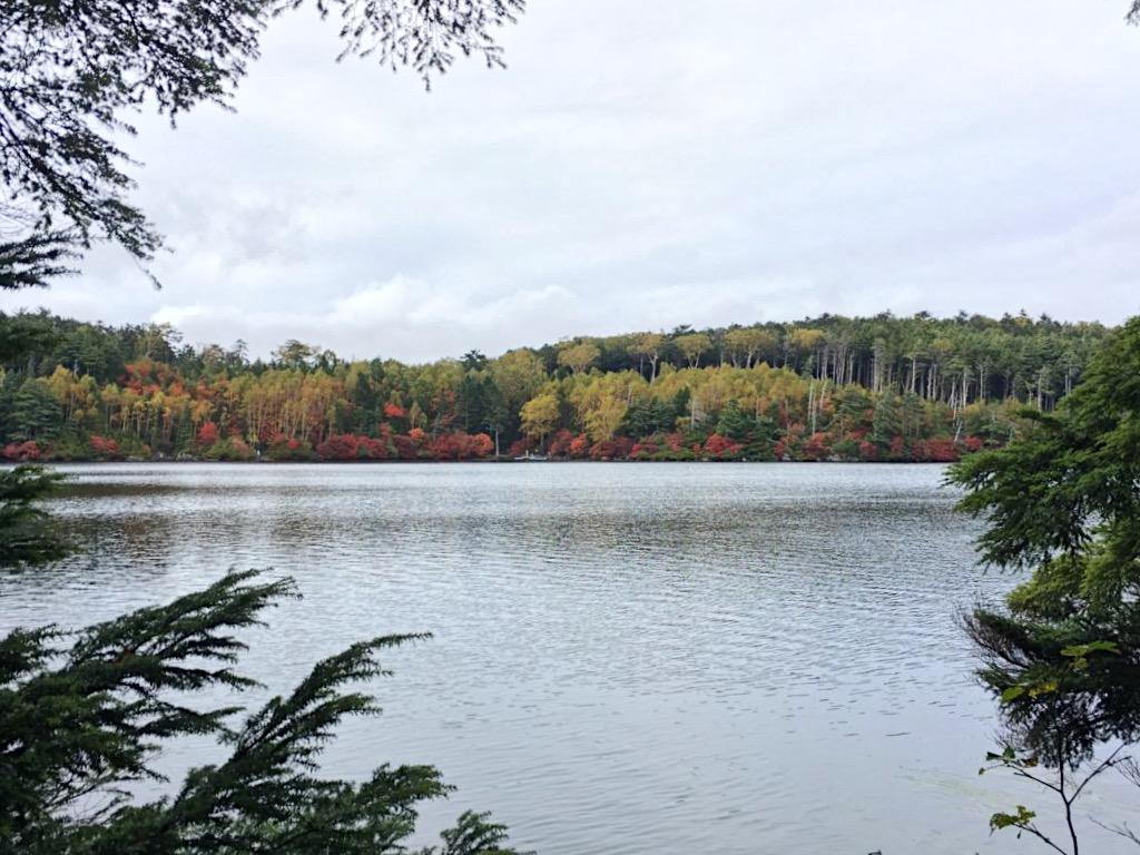 Shirakoma Pond