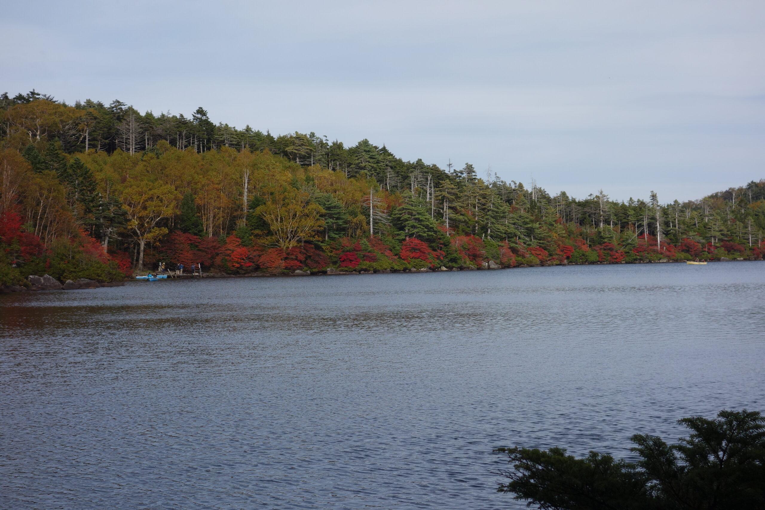 Lake Shirakoma